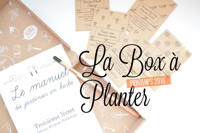 Le bio est à portée de main avec La Box à Planter